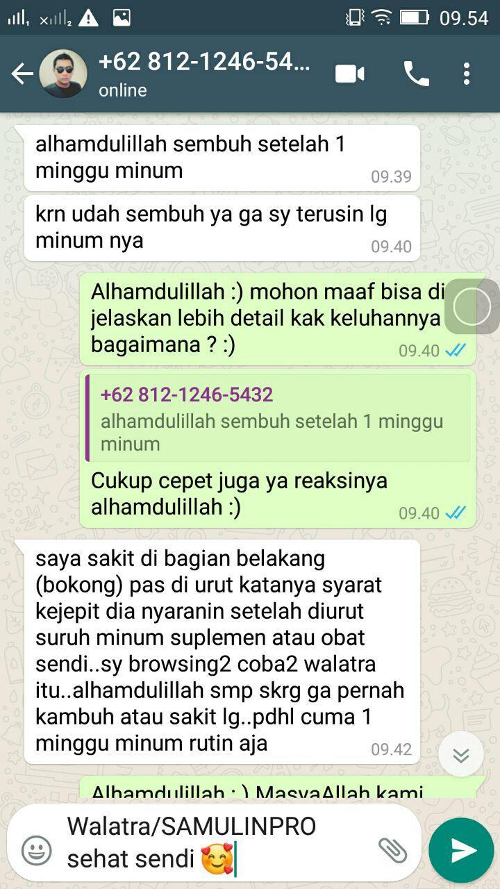Syaraf Kejepit Walatra Sanmulin Pro Sehat Sendi (1)